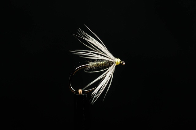 6 Pack Jase/'s Stalking bugs White Stalking Bugs Choice of Size Trout Flies